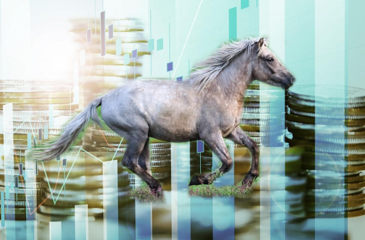 馬主は儲かる?平均収入と馬にかかる支出を公開!